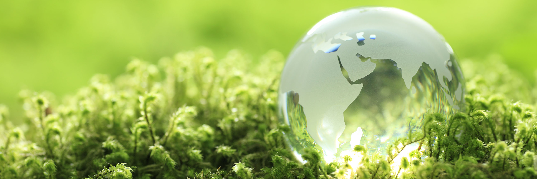 Environment Austep Music