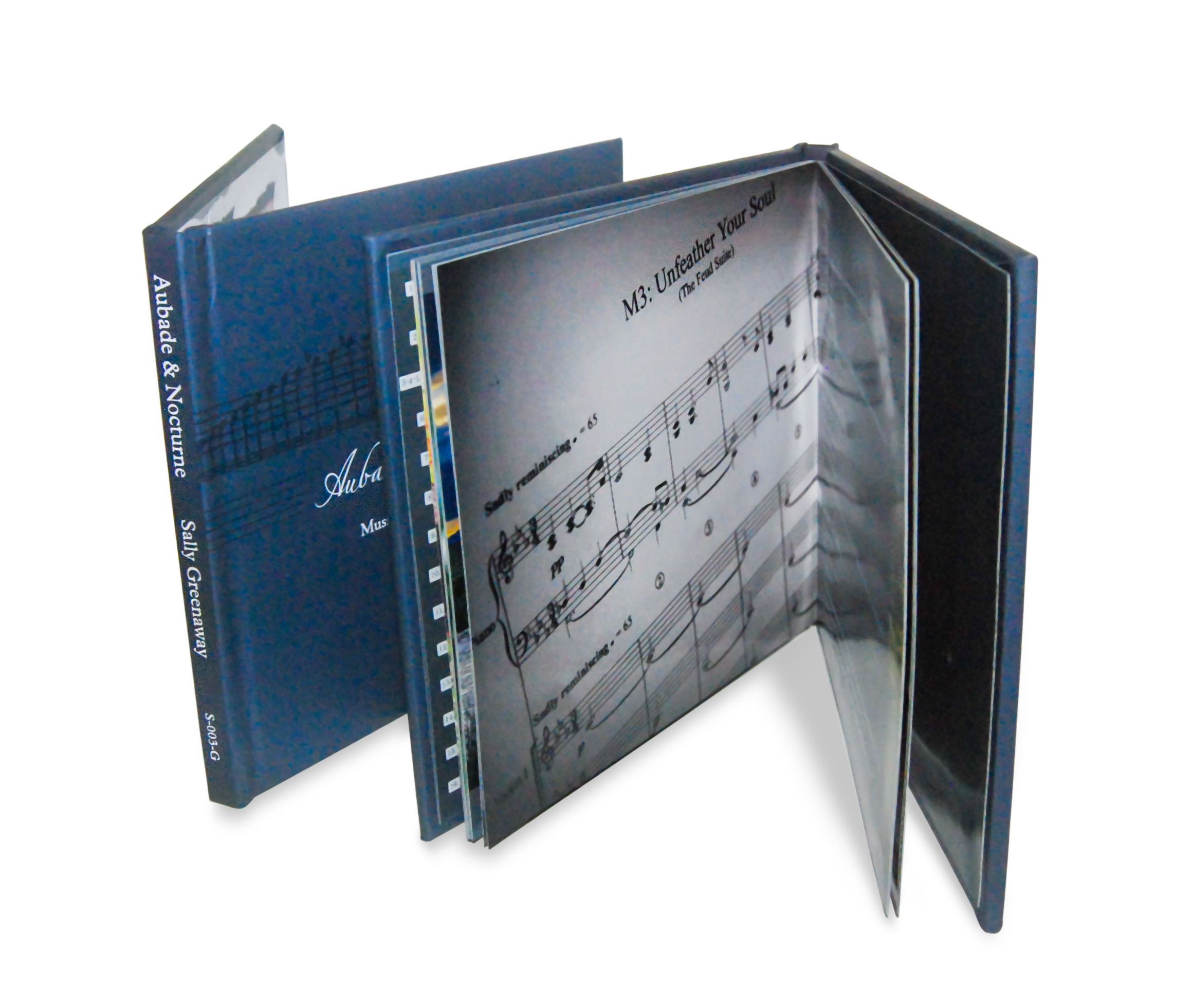 Custom Cd Packaging Austep Music