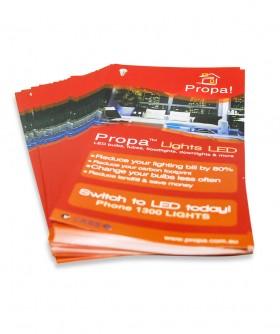 Eco Printing - Flyers